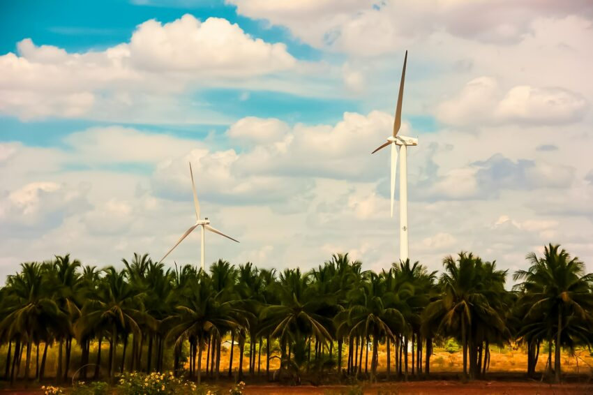 white wind turbine surrounded by palm trees under blue sky and white clouds during daytime